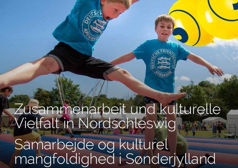 Kultur og politik for det tyske mindretal, Sønderjylland og grænselandet